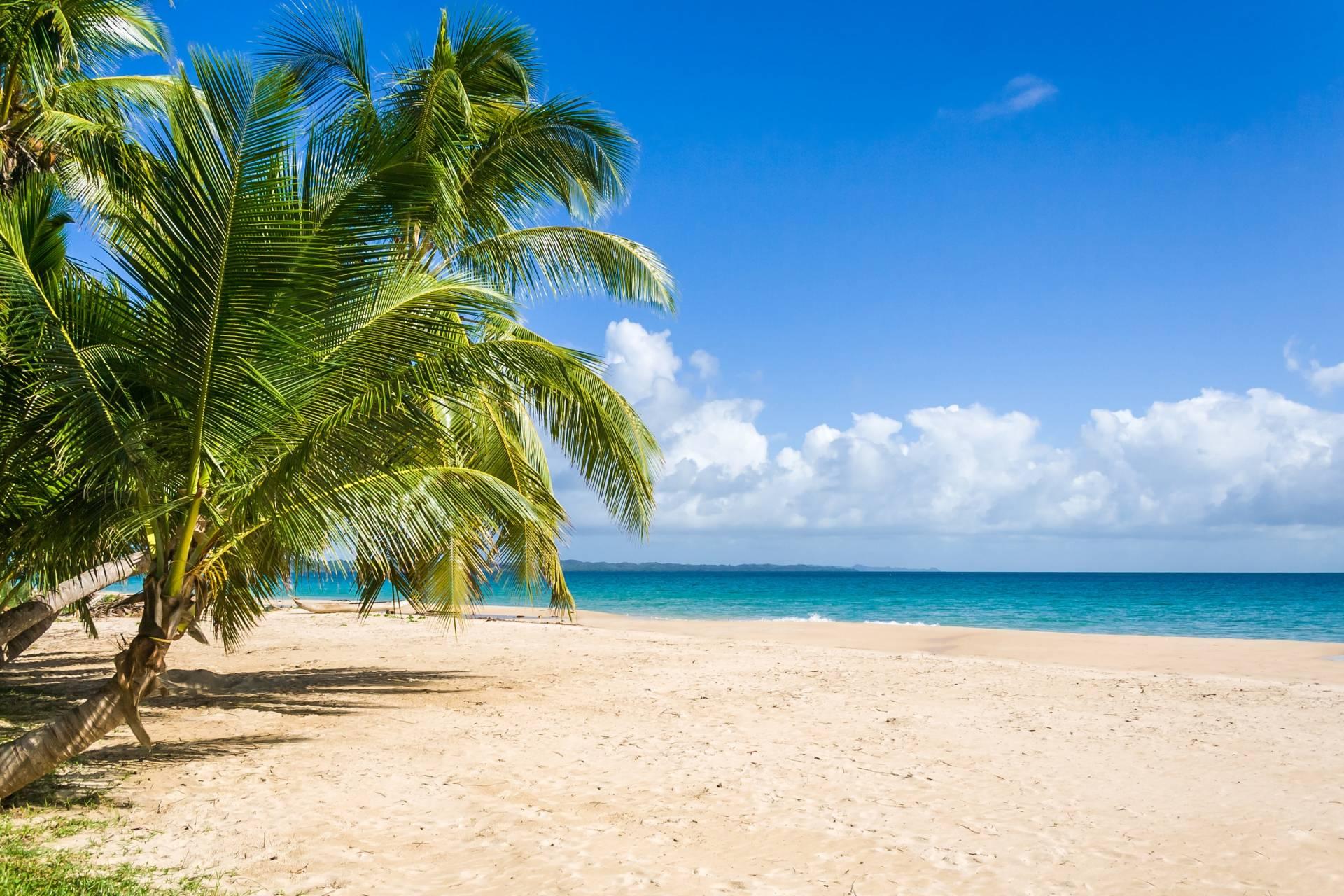 Imagini pentru madagascar plaje